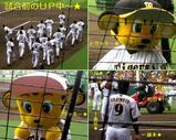 Blog_090503_n.JPG