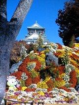 大阪城と菊
