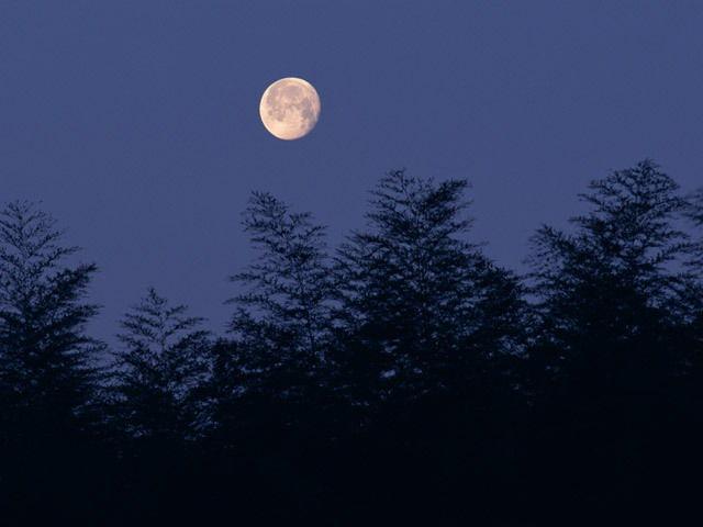 満月の日のスキンケア
