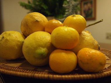 レモンとシークワーサー