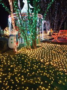 田沼のクリスマスイルミネーション