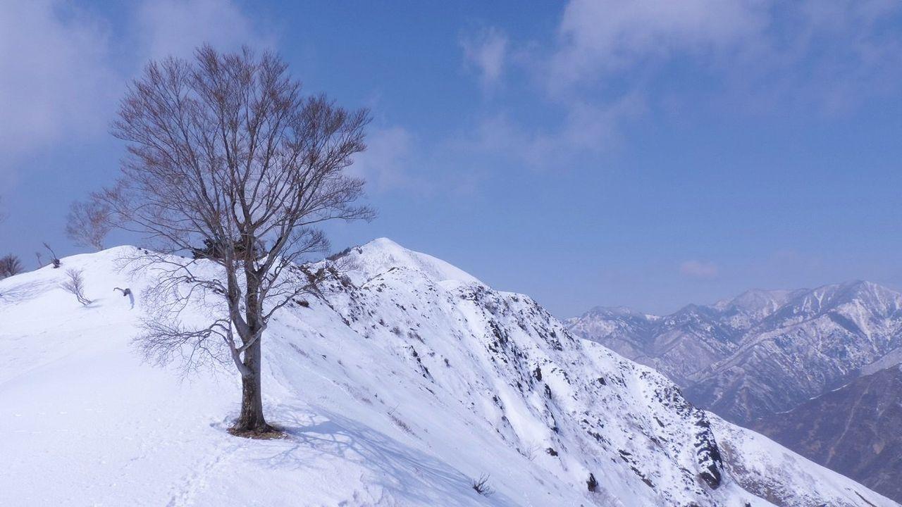 残雪の中倉山