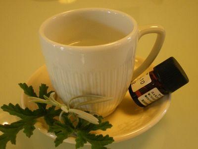 風邪のアロマセラピーRavensara aromatica