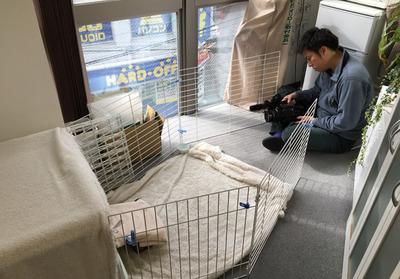 たろべえがテレビ東京で取材されました!