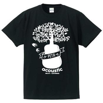 acoustic-002-1