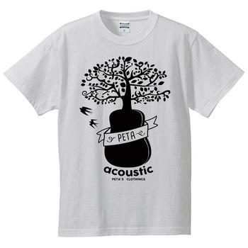 acoustic-001