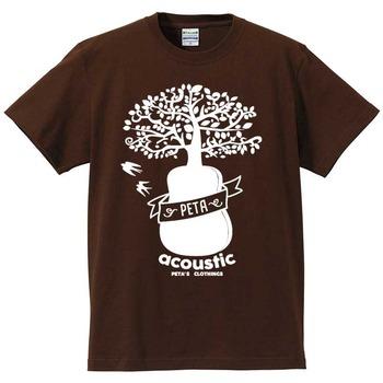 acoustic-052