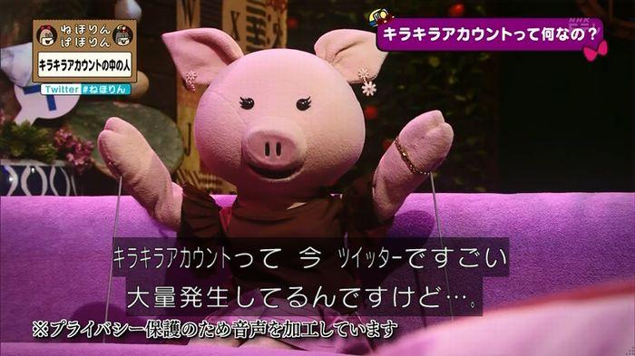 ねほりんぱほりんのキャプ20
