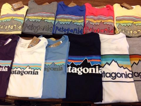 patagonia tee 入荷