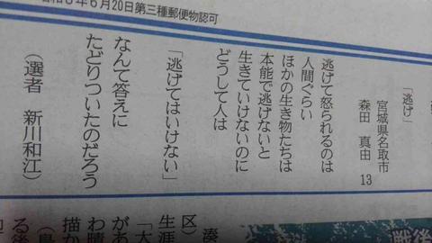 SnapCrab_NoName_2018-11-27_22-51-14_No-00