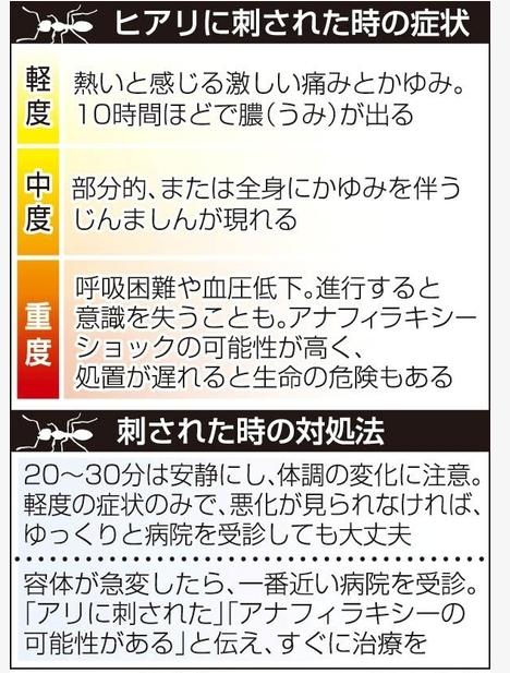 SnapCrab_NoName_2017-6-18_12-15-54_No-00