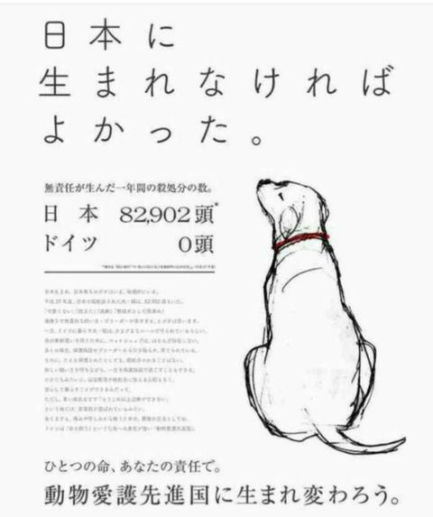 SnapCrab_NoName_2018-1-18_22-30-42_No-00