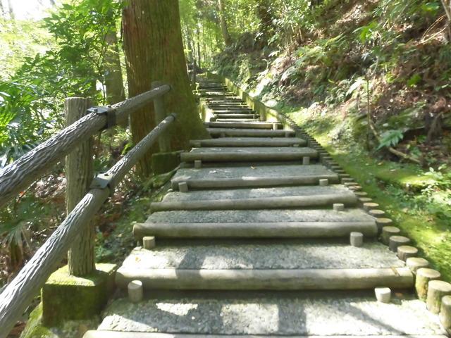 かずら橋階段1