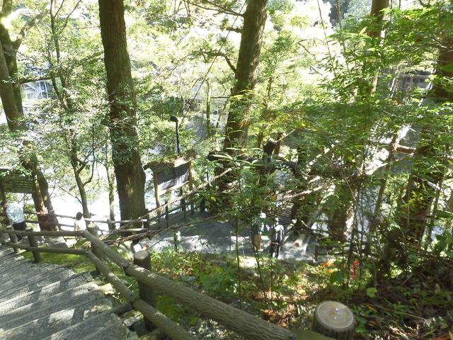 かずら橋階段