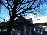 日本橋20080127_5
