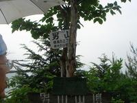 DSC01373