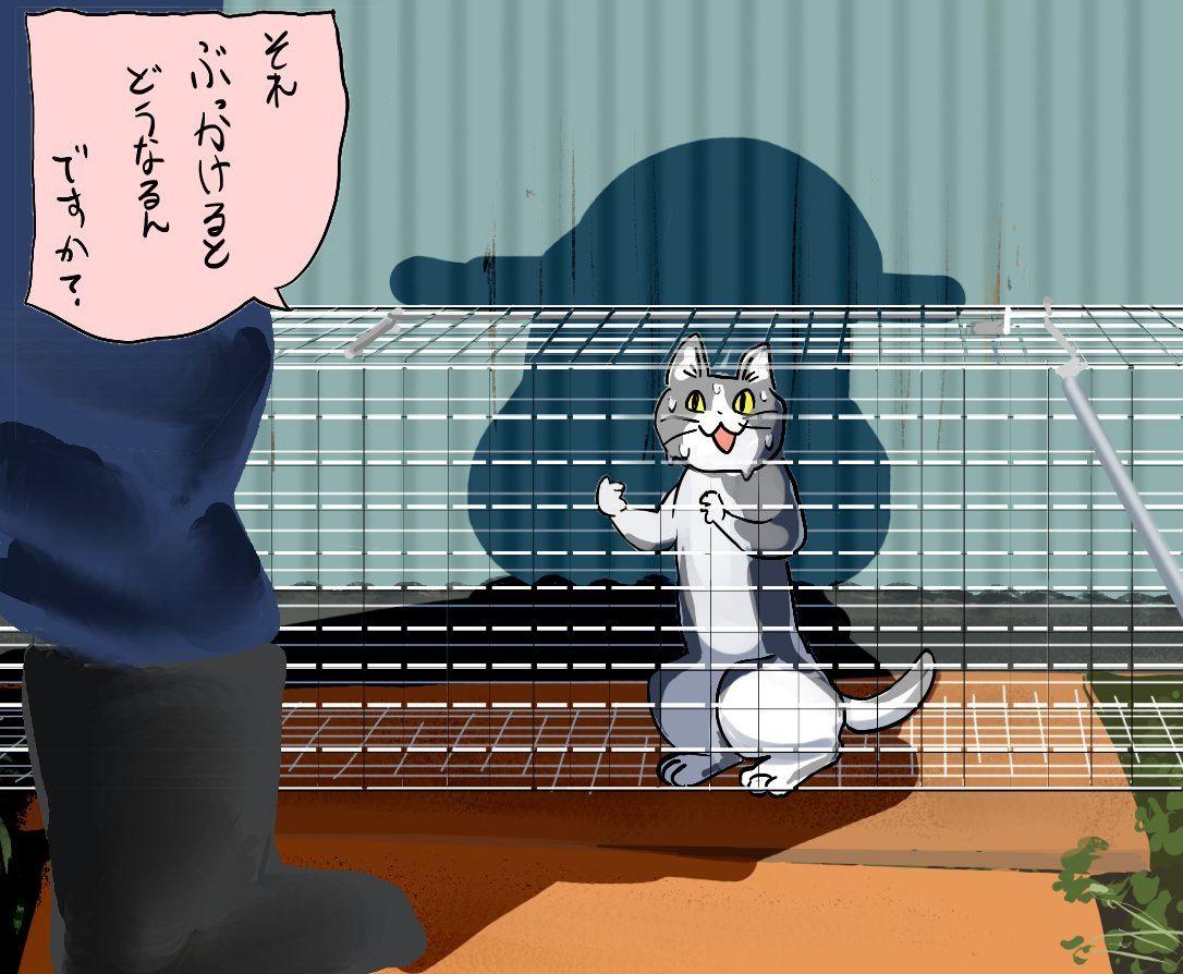 ソフトリョナ part.5 [無断転載禁止]©bbspink.com->画像>617枚
