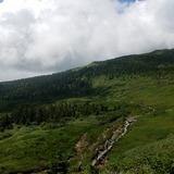 大凹の湿原に続く木道の登山道