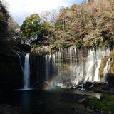 白糸の滝(日本の滝百選)�