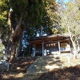 富士峰園地に鎮座する武蔵御嶽神社摂社産安社と安産杉