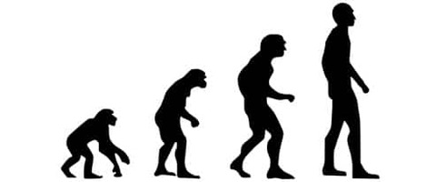 evolution-2780651_640-min