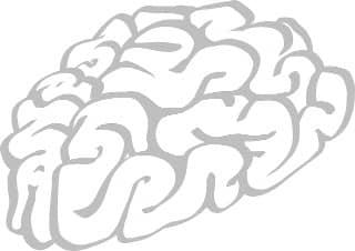 brains-304397_640-min