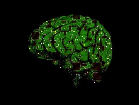 brain-1845944_640-min