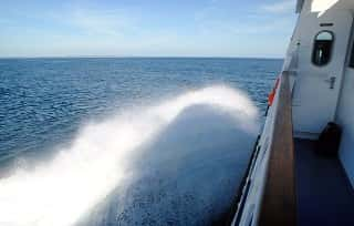 ferry-1977263_640 (1)-min