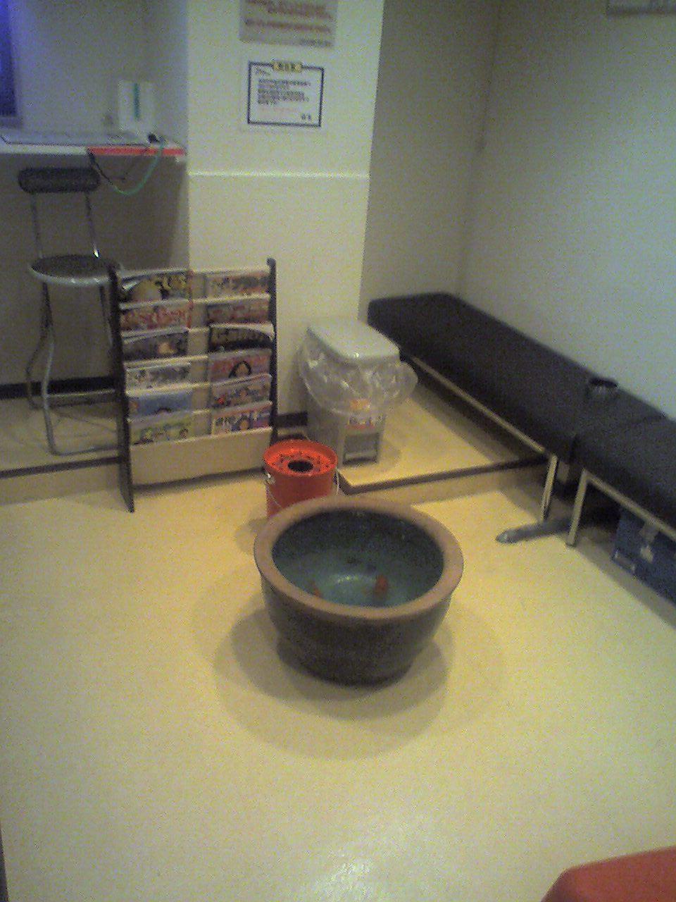 新橋 金魚1 新橋平成女学園に癒しの空間登場! 待合室がキレイになった新橋平成女学園ですが、そん