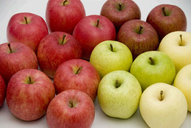 apple200801_007
