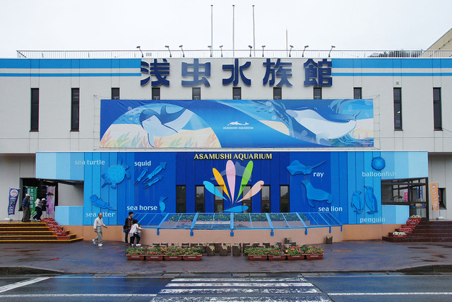 1280px-Asamushi_Aquarium_Aomori_Japan03n