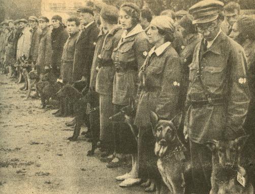 Dogtrainingschool