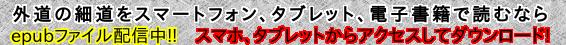 epubファイルバナー_566_45