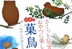 サークル一口坂食堂「日本の菓鳥図鑑」