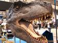 ティランサウルス実寸大ヘッドモデル