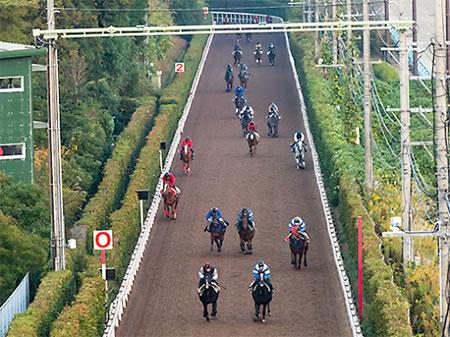 調教(追い切り)が最悪だったのに重賞で馬券になった馬って結構いる?