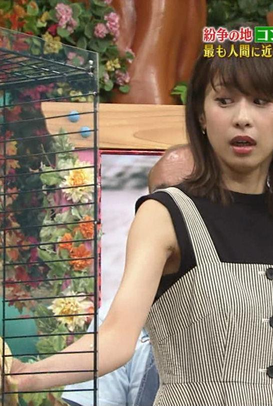 加藤綾子アナ(33)の嫌々チンコ握ってるみたいなキャプが抜けるww【エロ画像】 表紙