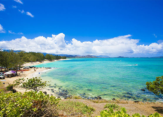 ハワイだけ芸能人をVIP扱いしてくれるかららしい 芸能人はなぜ正月ハワイへ行くのか? どハマりする人の特徴