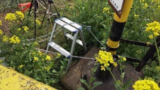 【栃木】真岡鉄道「心ない撮り鉄来ないで」 フェイスブックに投稿し大反響