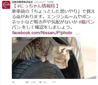 【猫バンバン】乗車前の「ちょっとした思いやり」で救える命…日産自動車のツイッターが話題に