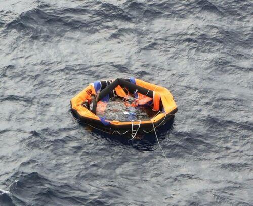 【奄美大島沖】「牛6千頭」乗せた貨物船沈没 救助の男「牛につかまり一命取り留め」=ネット「牛さんは見殺しかよ」