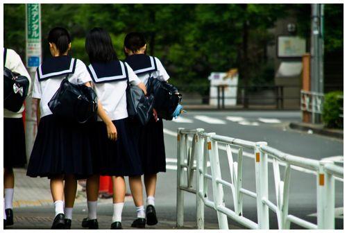 【和歌山】紀の川市議、女子中学生の自転車前かごに瀕死のハト=「命の大切さを知ってもらいたかった」