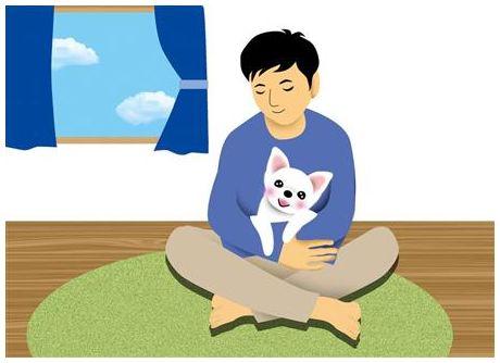 【人獣共通感染症】「コリネバクテリウム・ウルセランス感染症」で国内初の死亡例=福岡の60代女性、屋外で猫の餌やり…