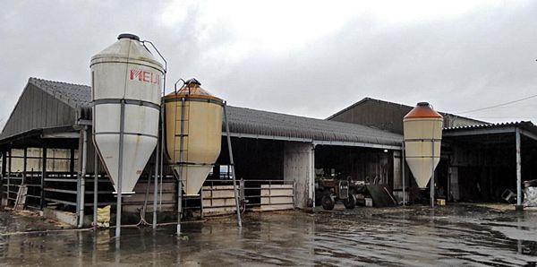 【徳島吉野川】和牛受精卵流出 「松平牧場」経営者逮捕=中国へ4回不正輸出