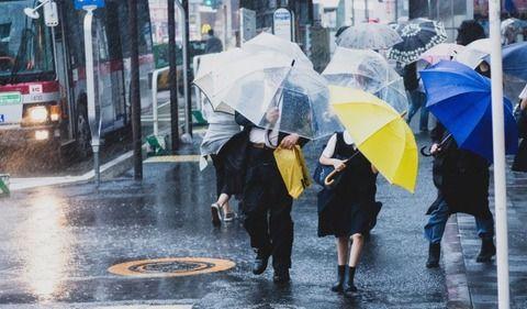 【警告】ワイの傘盗んだ奴wwwwwwwwwwww