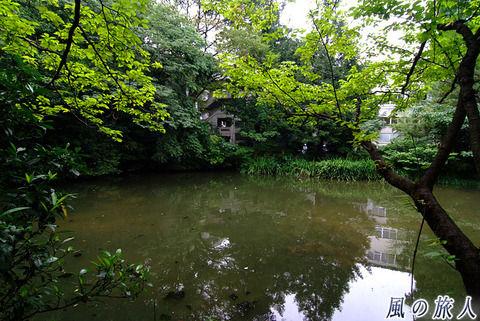 【闇深】佐渡の少年が溺死した池がマジで脱出不可能・・・