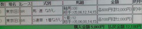 東京9R的中馬券