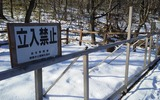 武佐の森1
