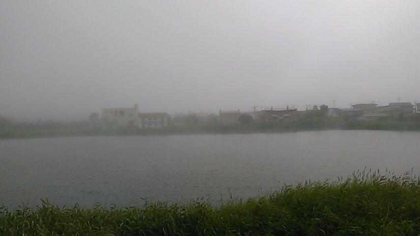 190806春採湖
