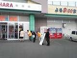 8371059c.JPG